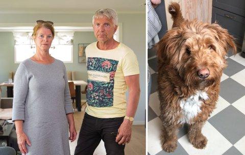 ALENE: Barna har flyttet ut og Torunn Holt Jensen og Frode Jensen er igjen alene i boligen på Smeby etter at hunden Winnie døde.