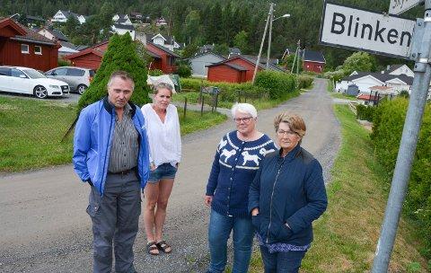 SALTER: Per Klæthe (fra venstre), Guro Frydenlund, Anne Kristin Formodalen og Kari Klæthe har til og med kjøpt veisalt selv i et forsøk på å begrense støvplagene.