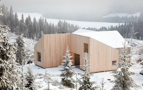 HYTTE MED UTSIKT: Her ligger hytta som nå kommer for salg, med utsikt over Mylla, og spesialtegnet av arkitekt.