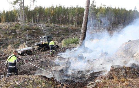 RIKTIG TID: Brannvesenets innsatsleder Jostein Dahl mener brannvesenet kom fram i riktig tid for å få slokket skogbrannen greit.