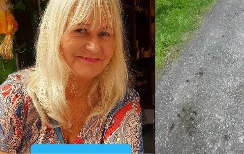 Guri Fossnes trodde nesten ikke sine egne øyne da hun så hvor mange snegler som lå på gangveien.