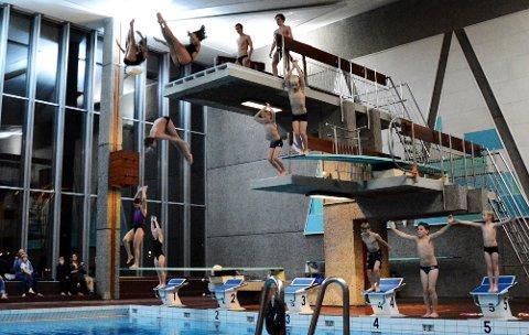 HOPPE I DET: Tønsberg og Færder vil gjerne igang med ny svømmehall, og da er valg av tomt sentralt på agendaen. Her er stupere fra Spinn i aksjon under 50-års markeringen for Tønsberg svømmehall ifjor.