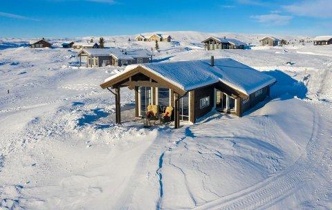 DYRESTE EIENDOM: Eiendomsmekler Marit Wangensten-Mo i PrivatMegleren Valdres solgte nylige denne hytta på Syndin for 4 millioner kroner.