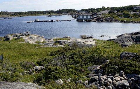 Nasjonalparkforvalter Monika Olsen er bekymret for gjengroing av strandengene i Kaffebukta på Herføl. Nå mener hun løsningen er å frakte sauer til Herføl om sommeren.  Arkivfoto Geir A. Carlsson