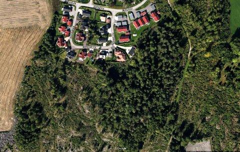 PÅ NYKIRKE: I skogen før for Klokkersvingen ønsker Mesterhus å bygge eneboliger og leiligheter.