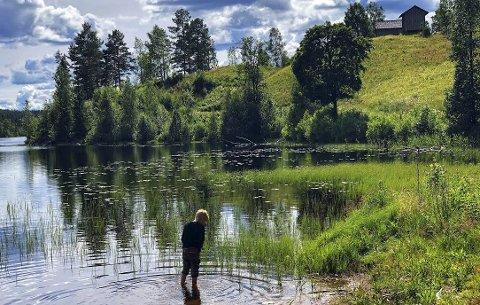 Stranden i Børen sjø: Tett nedenfor Oppistien Børli. Viktor Ingelsrudøya på 8 år vasser. Foto: Ida Marie Huse Gulbrandsen.