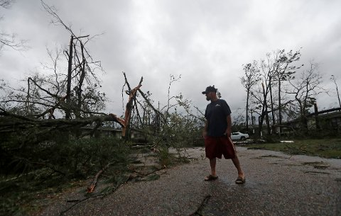 James Prescott surveys the damage as the remnants of Hurricane Michael move through Panama City, Fla., Wednesday, Oct. 10, 2018. He was visiting a friend and was not able to leave the street due to downed trees. (AP Photo/Gerald Herbert)