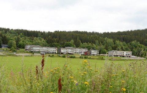 Fylkeskommunen vil ha et ord med i laget når planene om boligutbygging ved Øvre Ersgaard skal utvikles.