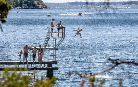 Havforsker og manetekspert Tone Falkenberg gir oss noen morsomme fakta om brennmaneter. Her er Oslofjorden representert ved Høysand i Skjebergkilen på en av sommerens flotteste dager.