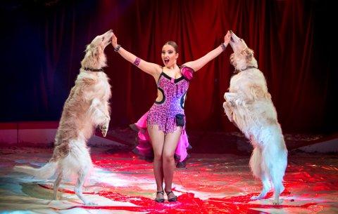 LEKEN VOV-FAKTOR: Laura Urunova med borzoi-hunder i Cirkus Arnardo.