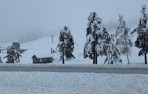 BRØYTEKANTER: Etter snøfall de siste dagene begynner brøytekantene å vokse på Gautefall.