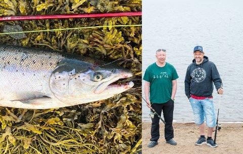 FISK OG FISKERE: Ketil Langstrand Hansen (til venstre) og John Davy Oddekalv ved Farstadvatnet. Laksen på 7,6 kg ble tatt av Jan Roar Aspenes i Offersøystraumen nylig.
