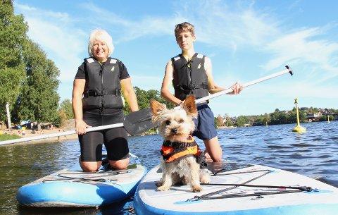 SURFEHUND: Doffen (3) elsker å surfe på SUP-brettet mens Nina og Daniel Karlsen padler.