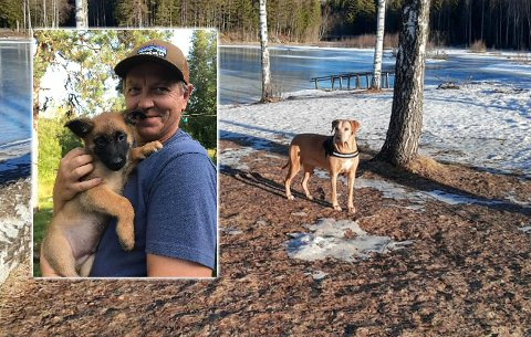 ROS: Tom André Gudbrandsen fra Søndre Land hyller andre hundeiere for at de har vært flinke til å rydde opp etter seg i det mye brukte turområdet ved Skrankefoss i det siste.
