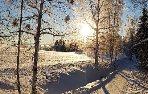 MILDVÆR: Langtidsvarselet viser at mildværet kommer til Gjøvik, og det gjør det også til resten av OAs distrikt.