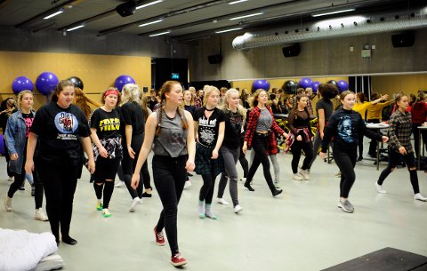 TRUET:  Musikk og danselinja ved Thor Heyerdahl videregående skole. er blant linjene som trues med nedleggelse.