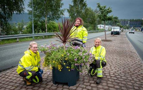 Helene Myrstad, Kristine Masterdalshei og Lise Gruben luker og planter blomster i midtrabatten i Vika.