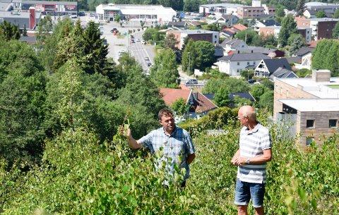 KONKURRANSER: Frederik Skarstein og Borgar Flaskerud vil arrangere arkitektkonkurranser før Tanberghøgda bygges ut.