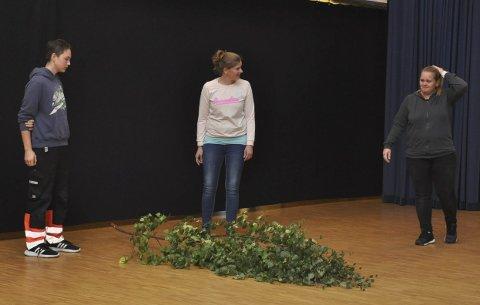 Kjent Skiptvet-problem: Gode råd er dyre når ei buske har blåst over ende i Skjetve. Fra venstre Patrik S. Jakobsen, Martine Karlsen og Lindy Enger.
