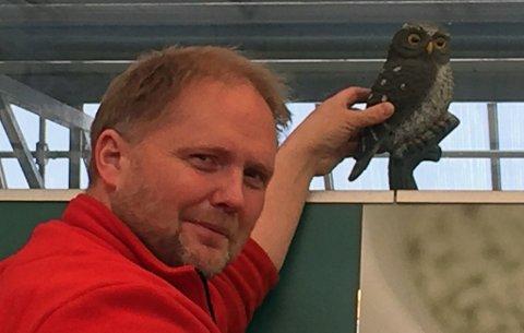 SMARTE SMÅFUGLER: Disse uglene holder småfuglene på avstand, men de må flyttes rundt hele tiden ellers blir lureriet avslørt, forteller daglig leder Marius Ward hos Plantasjen i Skien.