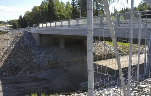 Ønsker viltkameraer: Viltnemnda i Kragerø søker Vegvesenet om tilskudd til innkjøp av viltkameraer for overvåking av undergangene på E18.