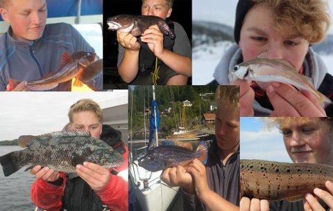 FISKELYKKE: Daniel Andersen (16) fra Skien har foreløpig fisket 87 forskjellige fiskeslag. Målet er å nå hundre forskjellige arter innen han fyller 18 år.