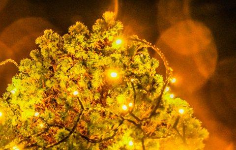 FRASTJÅLET: I løpet av natt til søndag er en privatbolig frastjålet store mengder utendørsbelysning.