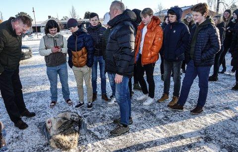 NØKTERNT: Kristian Noer, midt på bildet, ga elevene nøktern informasjon om ulvejakta. På bakken den siste ulven som er skutt så langt i Kynna-reviret, en fjorårsvalp.