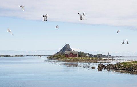 Det er så langt ikke registrert smittetilfeller i øykommunen Røst i Lofoten. Foto: Berit Roald / NTB
