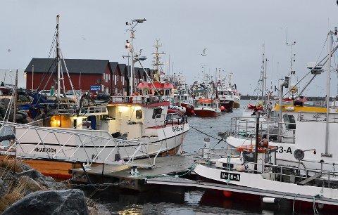 Uværet stopper Andøy-fiskerne i helga. Det er landligge i hele kommunen. (Foto: Fredrik Sørensen)