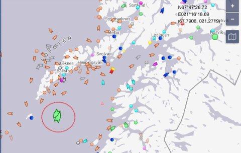 AVVENTER: Her ligger de to malmskipene. (Skjermdump Marine Traffic)