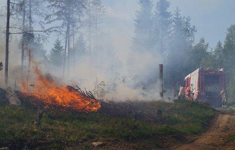 TOTALFORBUD: Ekstremtørken og den høye skogbrannfaren gjør at brannvesenet nå igjen innfører totalforbud mot åpen ild i inn- og utmark.