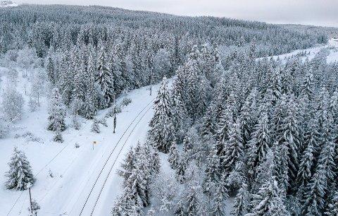 Mulighetene for at trær faller over Gjøvikbanen er mange da banen går i gjennom mye skog. Her dronefoto ved Reinsvoll retning Eina.