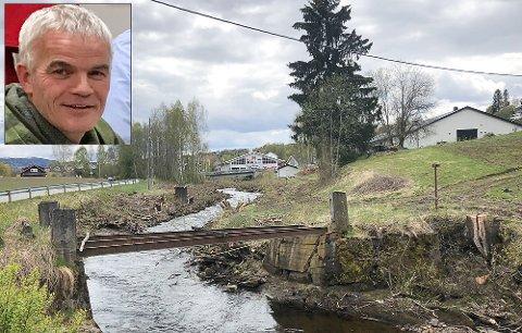 HEKKESESONG: Flere er bekymret for hva trefellingen i Brandbu og langs Vigga har hatt å si for fulgelivet langs elva. Tore Leirvik i NVE forklarer hvorfor det er blitt slik.