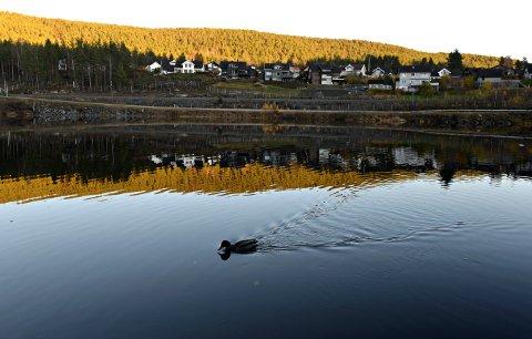 NYDELIG HØSTVÆR: 2. november 2020 ble det slått varmerekord for november i Kongsberg. Bildet er tatt fra flyplassen på Skavanger, som er blitt et flott turområde.