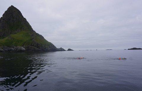 Mosken: Brødrene har forlatt Mosken, og svømmer i retning Lofotodden. De har her rundt åtte kilometer igjen. Robbie Hudson forteller om en fabelaktig flott svømmetur. Foto: Beth Harrison