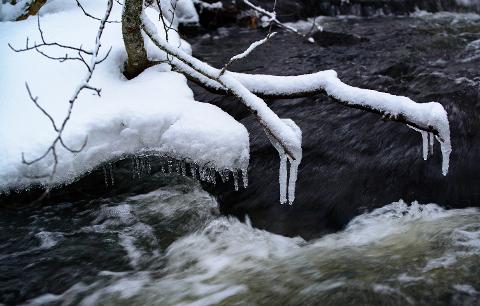 LITE AV DETTE: Selv om februar ikke ennå er over, har det vært en så høy snittemperatur at det allerede kan slås fast at årets vinter blir rekordmild i Sandefjord. Illustrasjonsfoto: Meteorologisk institutt