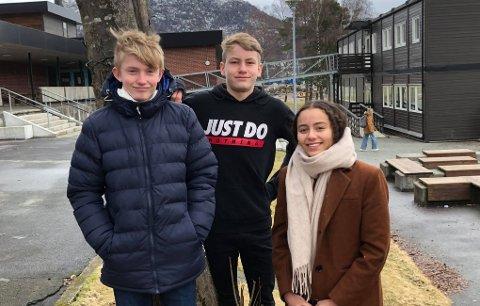 USIKRE: Johan Østerhus, Eskil Storevik Sandvik og Felicia Oseland er ikke helt sikre på hva de vil bli enda.