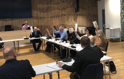 VANT FRAM: Flertallet fra Ap, Sp, Rødt og MDG gikk inn for å legge 1,6 millioner kroner i potten for å styrke bussforbindelsen Sande - Svelvik.