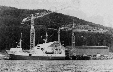 REMIFISK: M/S «Remifisk» ligger her til kai ved Vaagland båtbyggeri i 1979, klar for fiske i Barentshavet. Fiskebåten var verftets bygg nummer 96.
