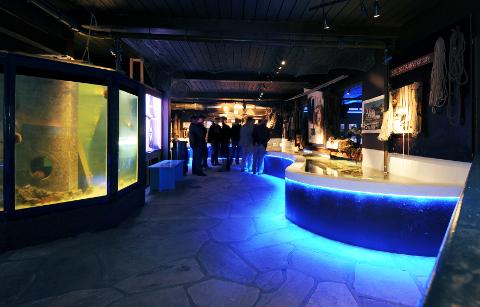 MER POPULÆRT I FJOR ENN ÅRET FØR: Risør Akvarium melder om 1150 flere besøkende i 2015 sammenlignet med året før.