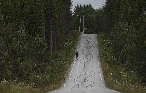 Burning.Slik ser det ut på mange veier i Salten???.Her på VatnVatnet.