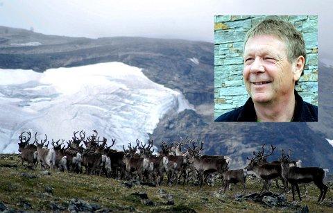 - Nå kan vi ikke sitte med hendene i fanget lenger, mener leder i Villreinforum Rondane-Sølnkletten, Jan Olav Solstad om villreinens levevilkår i Rondane.