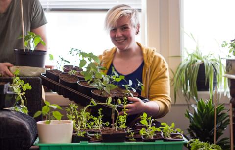 FORNØYD: Arnhild forteller at interessen for chili kom for rundt tre år siden. Siden det har antall planter bare økt hjemme i stua. I hendene har hun et brett med gule Carolina reapers.