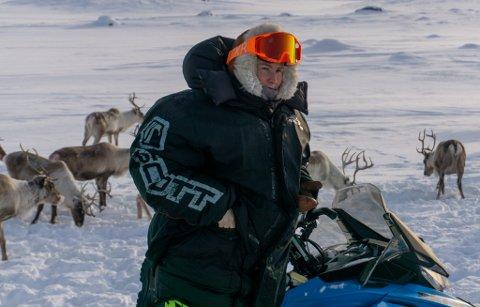 NYE KOSTER: Ann Helen Guttorm Johansen tok over konsesjonen på reindrift tilbake i 2014, men har kun drevet på fulltid de siste tre årene. – Jeg har aldri angret på at jeg begynte i reindrifta.