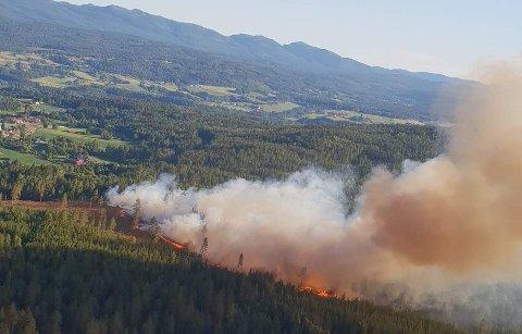 Bildet er fra skogbrannen på Gamlegrendåsen i 2018.