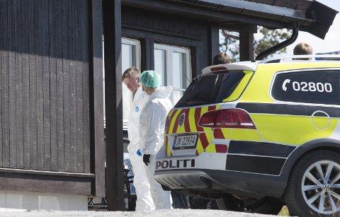 Drept: Det var i denne hytta på Sørbølfjellet i Flå hvor Ekholt-jenta Alexandra Therese Nilssen ble funnet drept tirsdag i forrige uke.