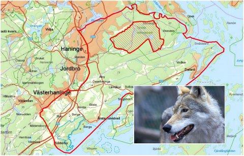 JAKTOMRÅDET: Jakten vil foregå innenfor området markert med rødt, med unntak av Tyresta nasjonalpark.