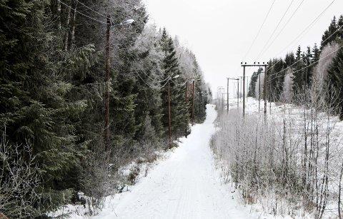 KAN FÅ MILLIONTILSKUDD: Rådmannen foreslår å bevilge inntil 2,5 millioner kroner til rehabilitering av lysløypa på Nordkisa. FOTO: ALEKSANDER HØMANBERG