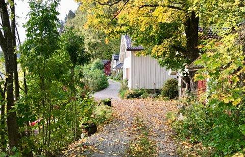 ADGANG: Politikerne i Røyken har vedtatt at allmenheten har rett til å gå langs Grundvikveien.
